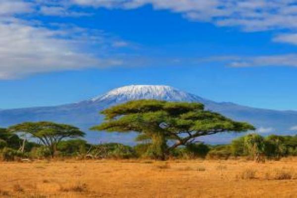 Kilimandzaro, Kenia, Afryka