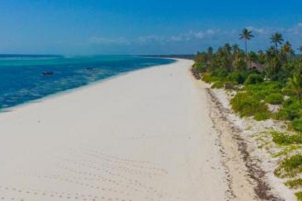 Paradise tropical beach Zanzibar island