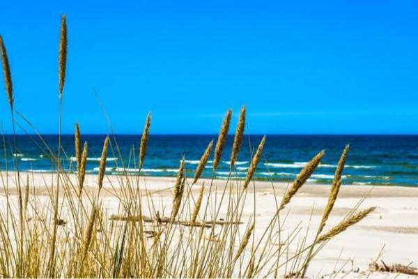 Plaża, Bałtyk, Łeba