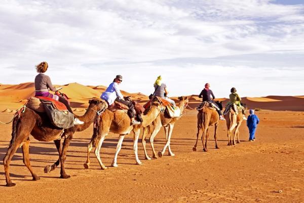 Dubaj jazda na wielbłądzie